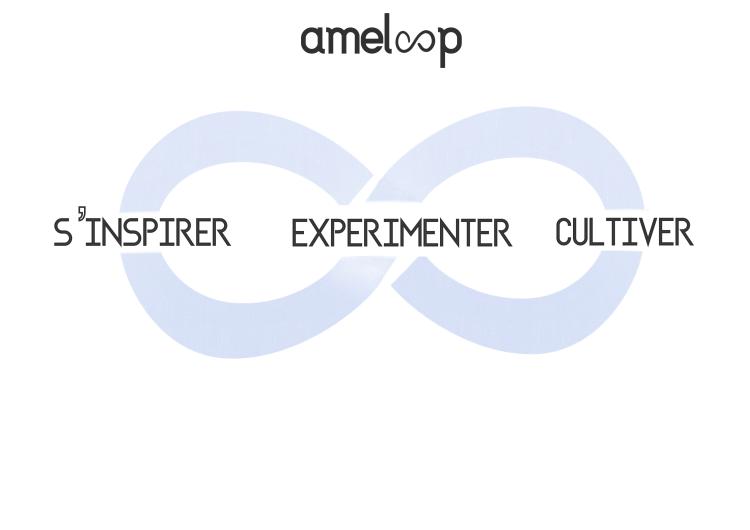 ameloop